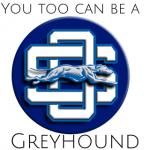 OS Greyhound