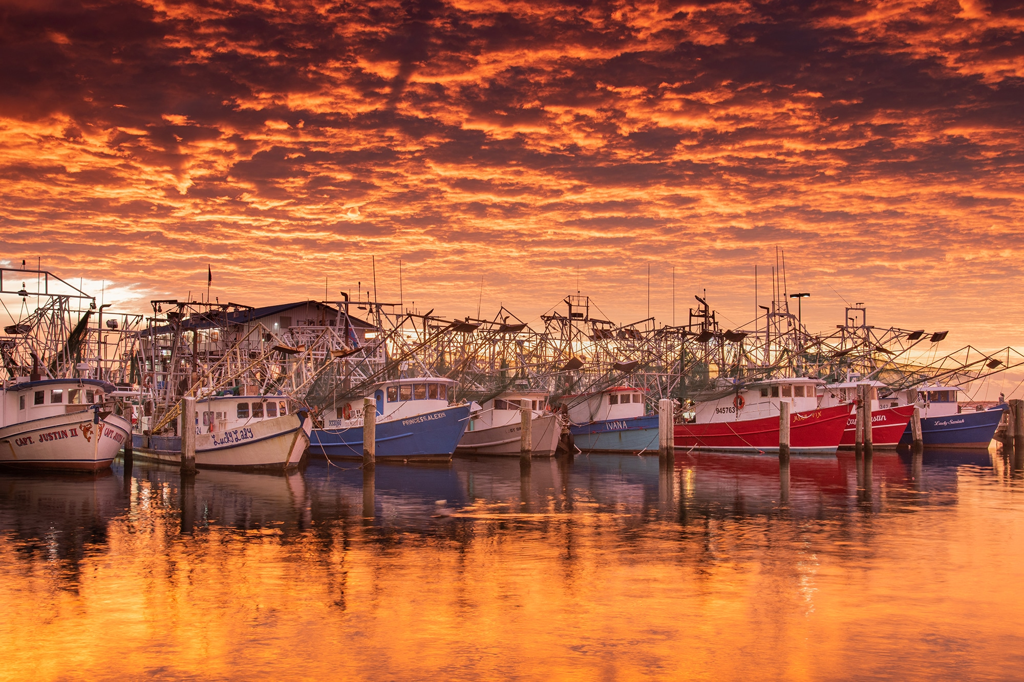 Harbor photo by Alex North