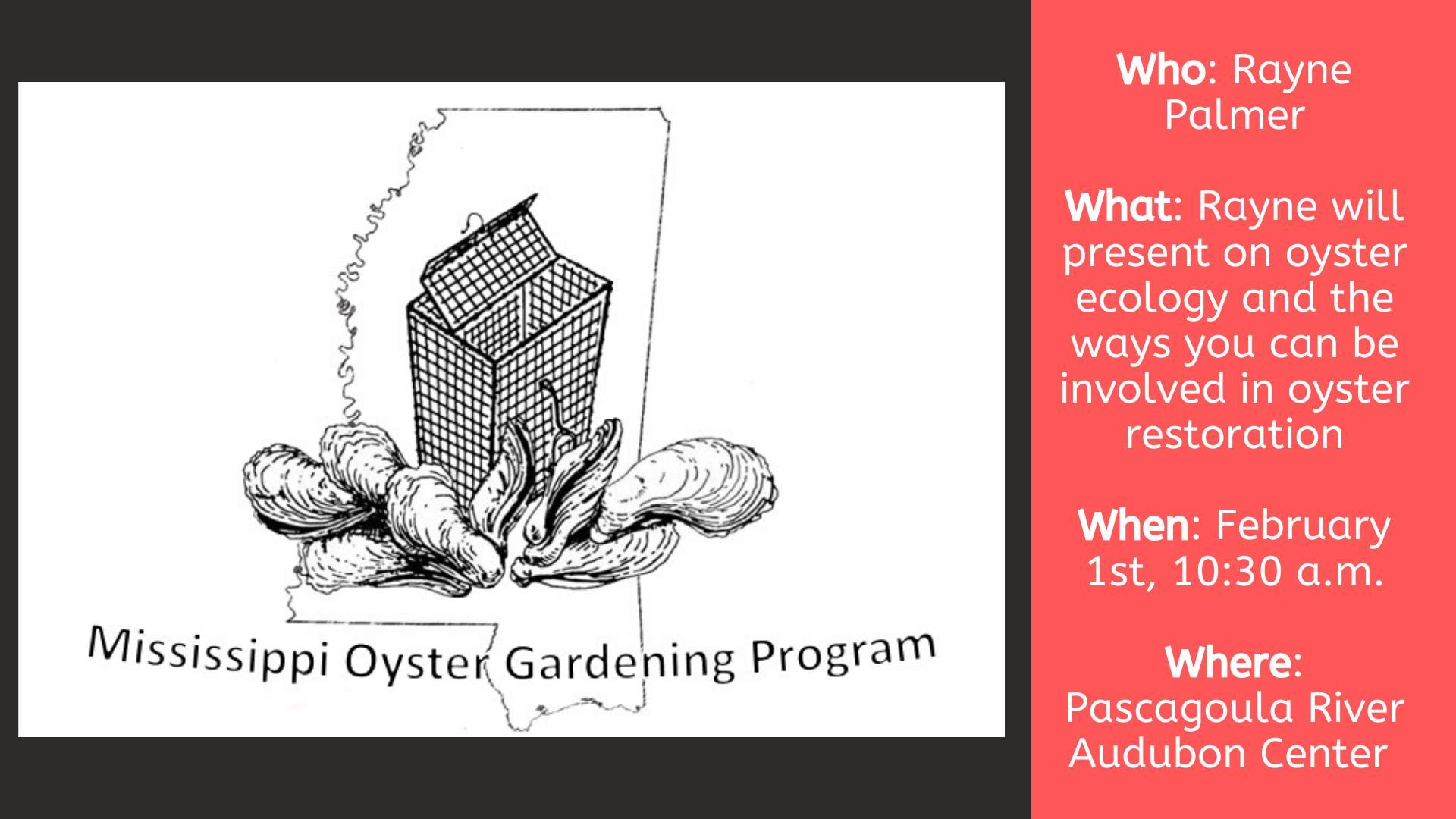 oyster garden