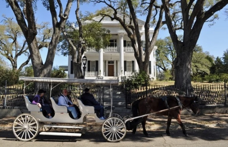 Go for a carriage ride in the historic Natchez